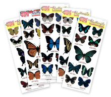 3-D Butterfly Stickers