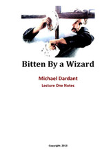 Bitten by a Wizard - Lecture Notes