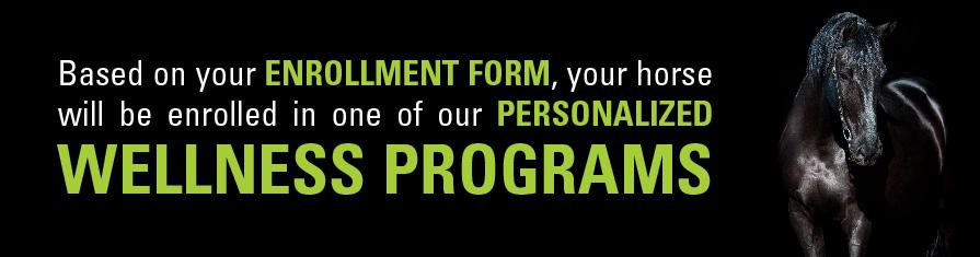 wellnessprogramsbanner-12-20-16-fin2-01.jpg