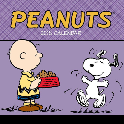 2018 Peanuts Mini Hanging Wall Calendar