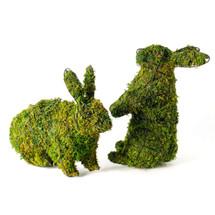 Bunny Topiary