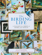 The Birding Life by Larry Sheehan, Carol Sheehan, and Kathryn Ge Precourt