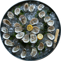 Rappahannock Oyster Co. Oysters