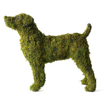 Good Dog Topiary