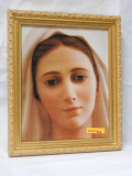 Our Lady of Medjugorje 8x10 Gold Framed Print