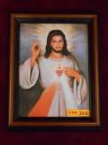 Divine Mercy (w/ Sacred Heart) 6x8 Framed Print