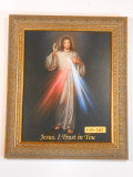 Divine Mercy 8x10 Elegant Framed Print