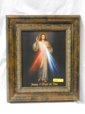 Divine Mercy 8x10 Gold-Speckled Framed Print