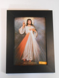 Divine Mercy with Sacred Heart 8x11 Framed Print