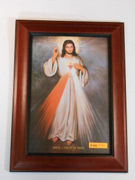 Divine Mercy with Sacred Heart 8x12 Framed Print