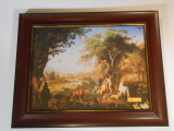 Earthly Paradise 11x15 Framed Print