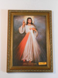 Divine Mercy with Sacred Heart 8x11 Gold Framed Print