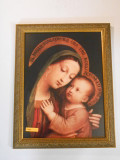 Our Lady of Good Counsel 11x15 Framed Print