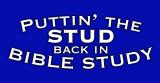 Bible Stud Vinyl Bumper Sticker
