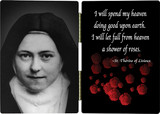 St. Therese (Nun) Diptych