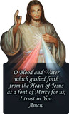 Divine Mercy Cutout Magnet