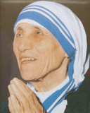 Mother Teresa Praying Postcard