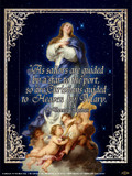 Immaculate Conception (St. Thomas Aquinas Quote) Poster