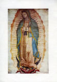 Our Lady of Guadalupe: Fine Art Print