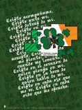 Spanish St. Patrick With Prayer Poster