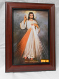 Divine Mercy 8x12 Framed Print