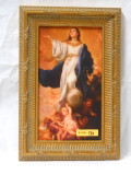 Young Immaculate Conception 5x9 Framed Print