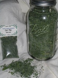 Cat Nip-Special Home Grown 1/2 oz
