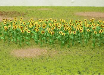 """1"""" Sunflowers"""