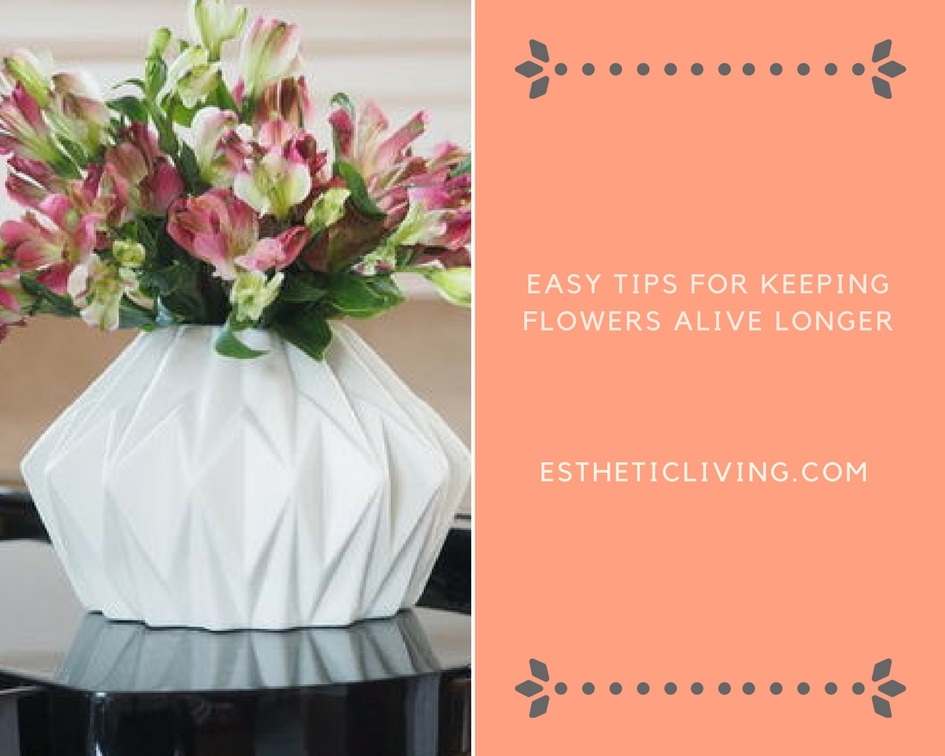 Q+ A: How to Keep Your Flowers Alive Longer - Esthetic Living