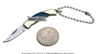 Abalone Shell Handle Key Chain Pocket Folder Knife