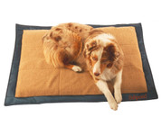 Fishpond Westwater Inflatable Dog Bed