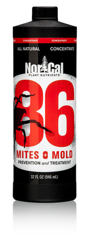 86 Mites & Mold prevention and treatment