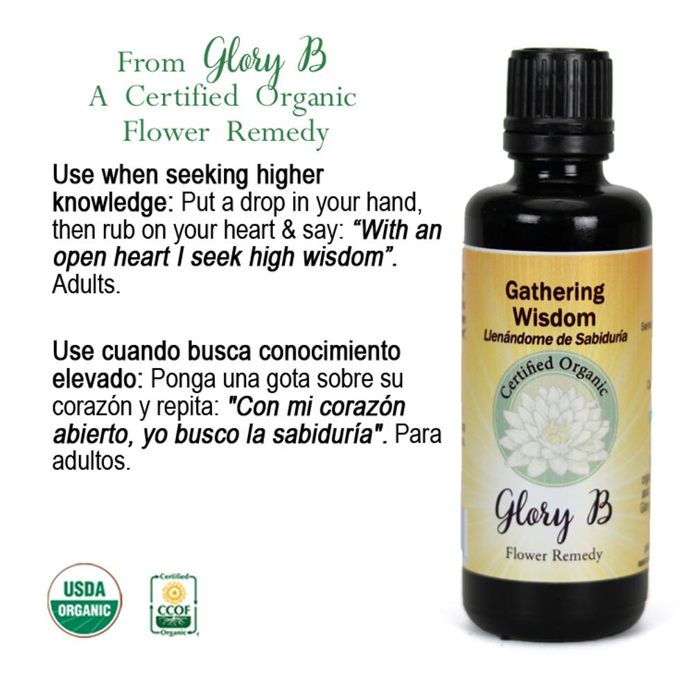 GATHERING WIDSOM Organic Flower Essence Blend