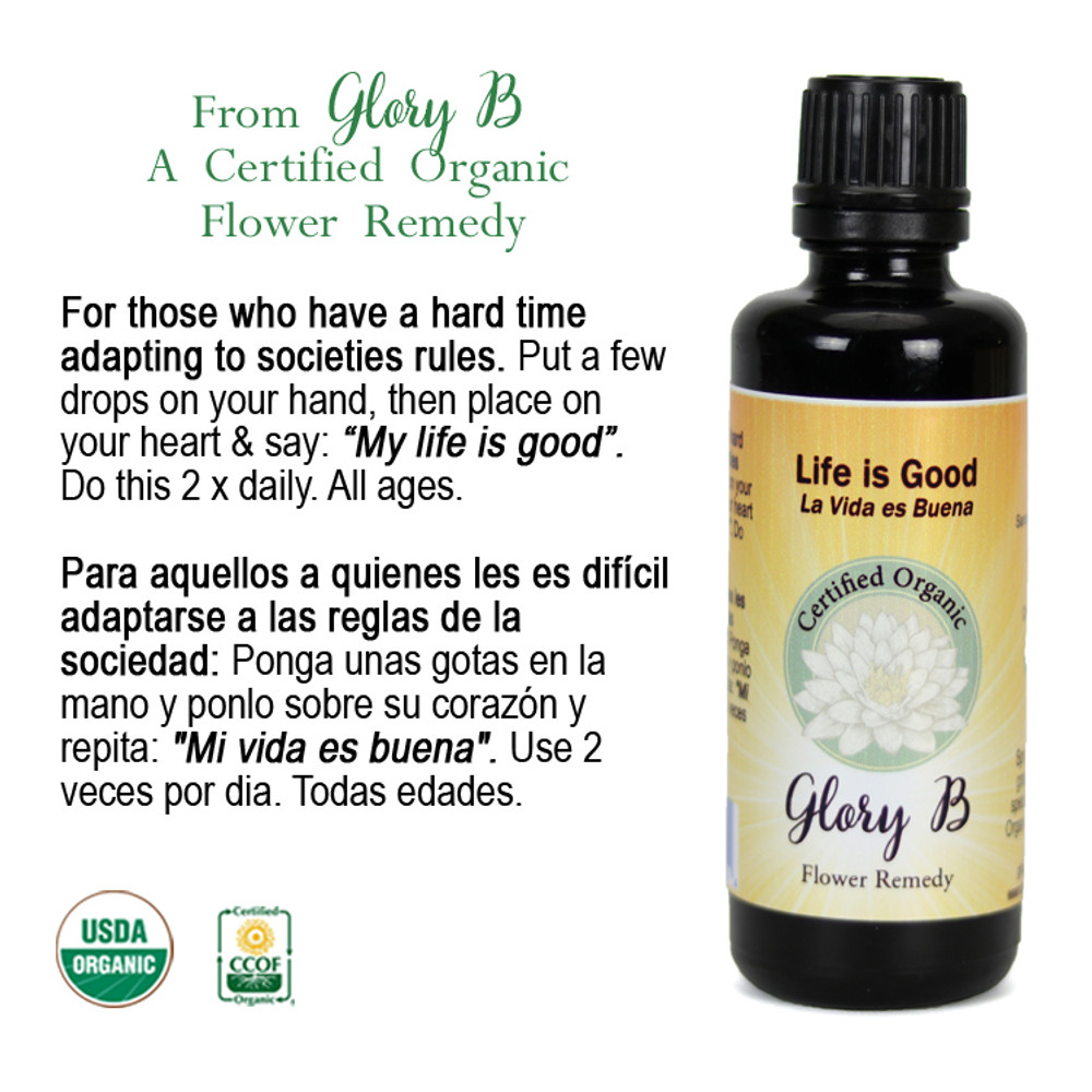 LIFE IS GOOD Organic Flower Remedy