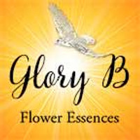 Glory B Flower Remedies