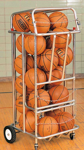 Roll-A-Bout Ball Carrier