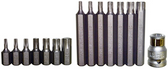 91215 - 16 PC. TORX-R INSERT BIT SET 10MM HEX