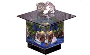 670 Aquarium End Table