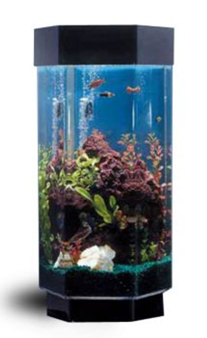 TT-1500 Hexagon AquaScape