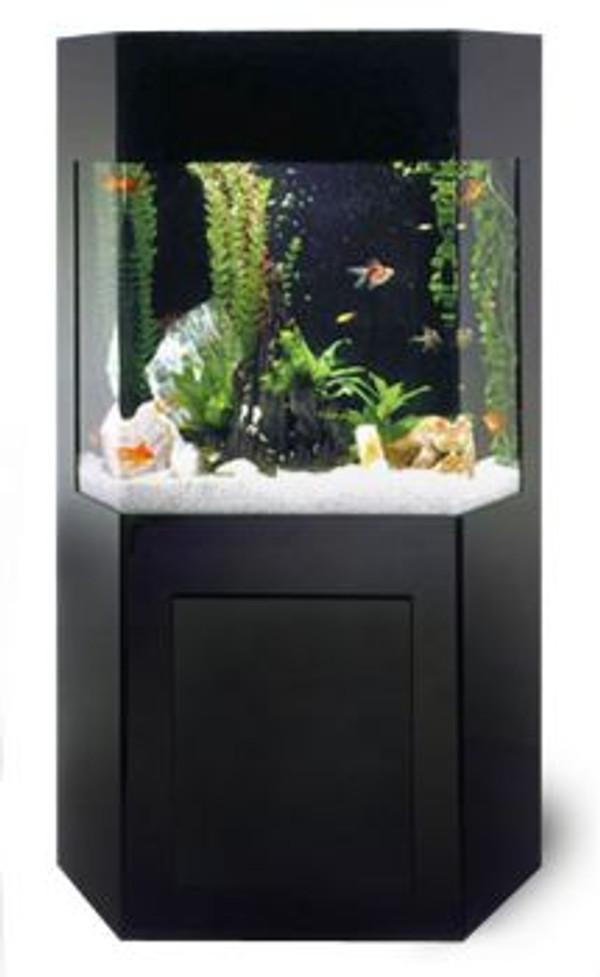 SB-1 Shadow Box AquaCustom Aquarium