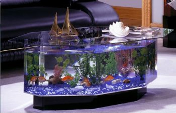 680 Stretched Octagon Aquarium Coffee Table