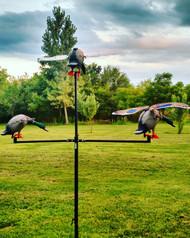 Tri-Fly Decoy Holder