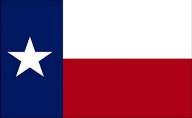 Window Decal STATE OF TEXAS FLAG DECAL Texas Decal Car Decal Truck Decal