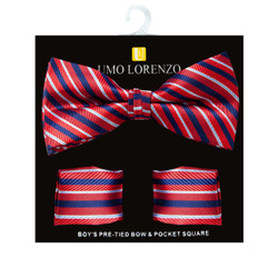 Boy's Fancy Striped Bow Tie and Hanky Set - BFTH3019
