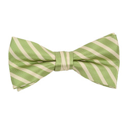 "Boy's 2""Green Striped Polyester Woven Banded Bow Tie FBB11"