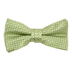 "Boy's 2"" Green Dotted Polyester Woven Banded Bow Tie FBB12"