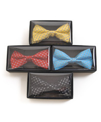 Banded Silk Printed Bow Tie SBB2050