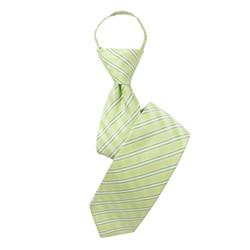 Boy's  Light Green  Striped Zipper Tie - MPWZ3303-GR3-17