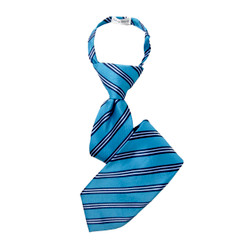 Boy's Turquoise  Striped Zipper Tie - MPWZ3303-TQ1-14