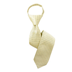 Boy's Yellow  Geometric/Polka Dot Zipper Tie - MPWZ3303-YW8-17
